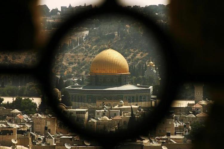 فلسطين التي رأيت