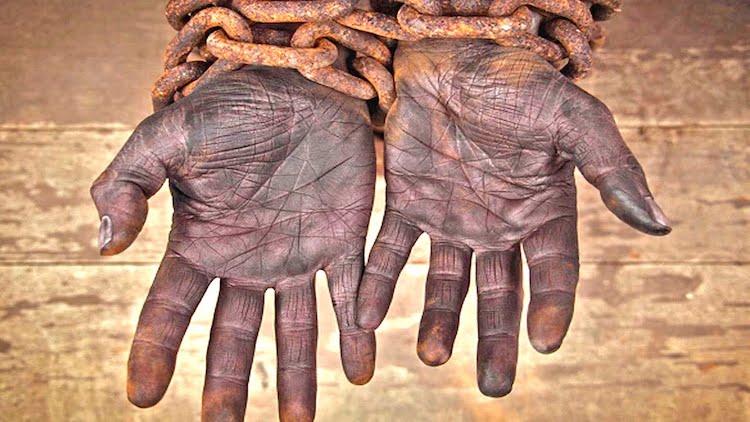 الإنسانية .. بضاعة المجرمين